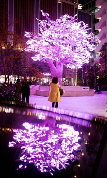 """东京举办""""日本桥·樱花庆典"""" 10万个LED灯泡打造另类樱花保定"""